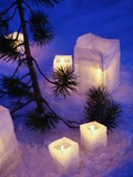 Candles Sitting on Snow by Tree Photographic Print by Philip Harvey