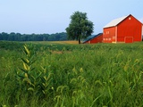 Red Barn in Green Field Photographic Print by Bruce Burkhardt
