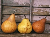 Studio-Pears Photographic Print by Kim Koza