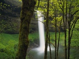 Waterfall Behind Trees Photographic Print by Robert Glusic