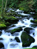River Cascading Down Moss-Covered Rocks Photographic Print by Robert Marien