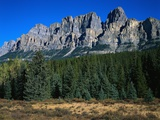 Forest and Castle Mountain Photographic Print by Robert Marien