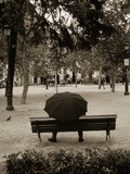 Person Under Umbrella at Madrid Park Photographic Print by Jack Hollingsworth
