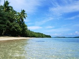 Tropical Coastline of Turtle Island Photographic Print by David Papazian