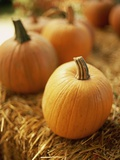 Pumpkins on Bale of Hay Photographic Print by David Papazian