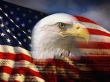 Kopf eines Weißkopfseeadlers und amerikanische Flagge Fotodruck von Joseph Sohm