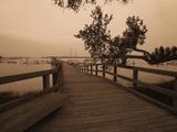 Bridge Leading to Pier Fotodruck von Guy Cali