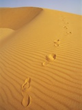 Footprints in Sand Dune Photographic Print by Ron Watts