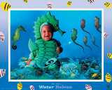 Water Babies, Seahorse Prints by Tom Arma