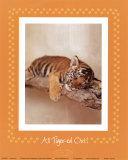 All Tiger-ed Out Reprodukcje autor Rachael Hale