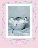 Bowl Dwellers Poster by Rachael Hale