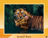 Tigre de safari imaginario Láminas por Tom Arma