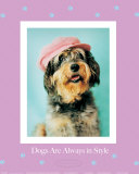 Always in Style Poster by Rachael Hale