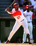 Vladimir Guerrero 2005 Batting Photo