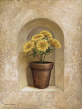 Potted Flowers II Prints by Michael Marcon