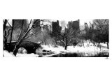 Love Bridge in Central Park, Winter Print by Igor Maloratsky