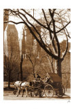 Central Park Carriage Posters by Igor Maloratsky