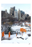 The Gates and Wollman Rink, Central Park Art by Igor Maloratsky