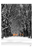 The Gates and Tree Path, Central Park Prints by Igor Maloratsky