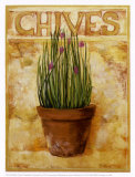 Chives Prints by Carol Elizabeth