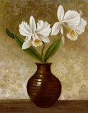 Flowering Orchid Poster by Charles Gaul