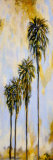 Palm Drive II Prints by Brenda Johnson