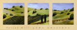 Tuscan Hills Prints by Claire Burke