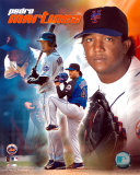 Pedro Martinez - 2005 Composite Photo