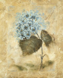 Blue Blooms II Prints by Richard Henson