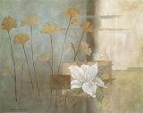 Teal Lily Prints by Carol Robinson