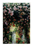 Cascading Roses Limited Edition by Greg Singley