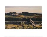Collines au sud de Truro, 1930 Affiche par Edward Hopper