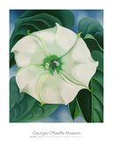 Jimson Weed, 1932 Poster by Georgia O&#39;Keeffe