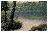 Golden Pond Sammlerdrucke von J. Vanderbrink
