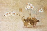 Orchids in a Chinese Bowl Prints by Cheri Blum