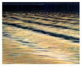 Wave Action Collectable Print by S. Mennie