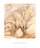 Winter Cottonwoods, East V, 1954 Prints by Georgia O'Keeffe