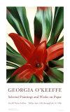 Blätter einer Pflanze Poster von Georgia O'Keeffe