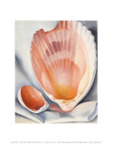 Two Pink Shells, 1937 Posters by Georgia O'Keeffe