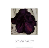 Purple Petunia, 1925 Prints by Georgia O&#39;Keeffe