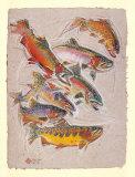 Trout Gathering Art by Dan Chen