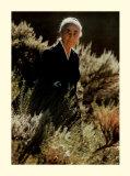 O`Keeffe with Chamisa Poster von  Springmann