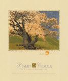 Der bischöfliche Aprikosenbaum Poster von Gustave Baumann