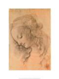 Kopf der Giovinetta Poster von  Leonardo da Vinci
