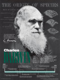 Charles Darwin Affiche