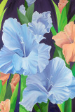 Blue Gladioli Prints by Sophia Dare Dentiste