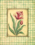 Gingham Tulip Poster by Kate McRostie