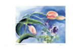 Leaning Tulips Collectable Print by Lynn Donoghue