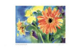 Big Orange Daisy Limited Edition by Lynn Donoghue
