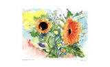 Daisies Collectable Print by Lynn Donoghue